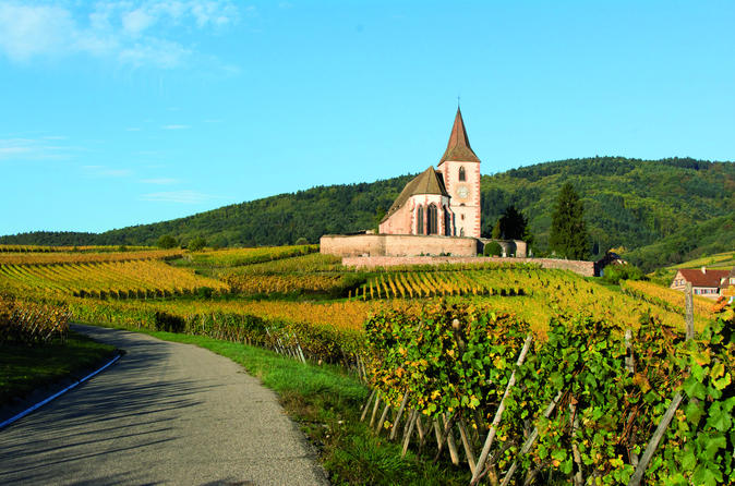 Alsace full day wine tour from colmar in colmar 299208