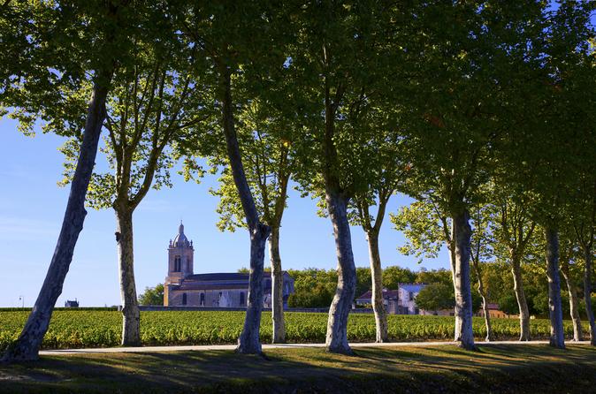 Excursão de dia inteiro em grupos pequenos para degustação de vinhos de Médoc saindo de Bordeaux