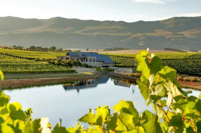 Private Wine Tour In The Hemel-en-Aarde Wine Region From Stellenbosch