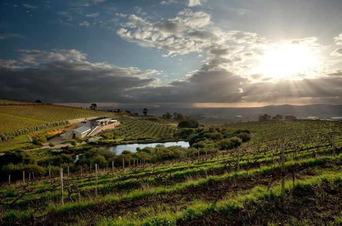 Private Wine Tour Of Stellenbosch From Stellenbosch