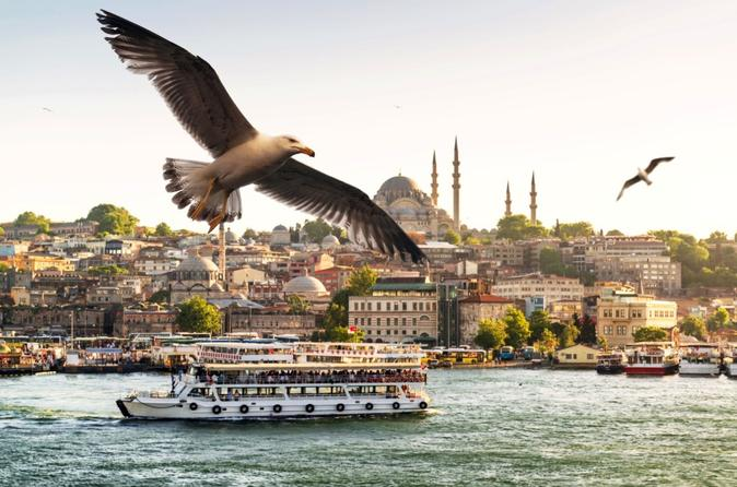 Private Full Day Istanbul Bosphorus Cruise and Asia Tour