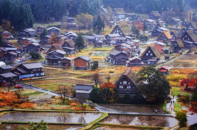 Multi-Day Tour of Osaka, Kyoto and Tokyo
