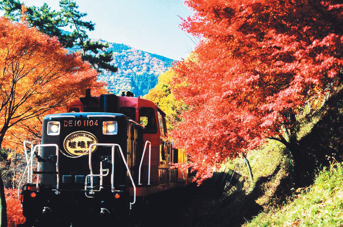 Sagano Autumn Foliage Train Ride Plus Highlights