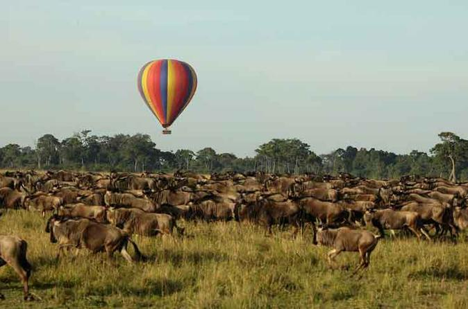 3 Days 2 Nights Masai Mara Joining Safari  From Nairobi