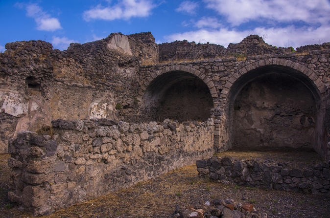 Pompeii ruins and Archaeological Museum private tour from Rome