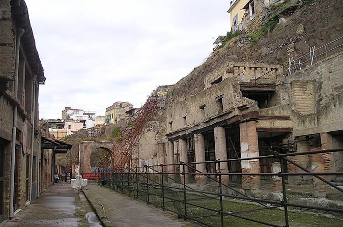 Private Herculaneum and Archaeological Museum Tour from Rome