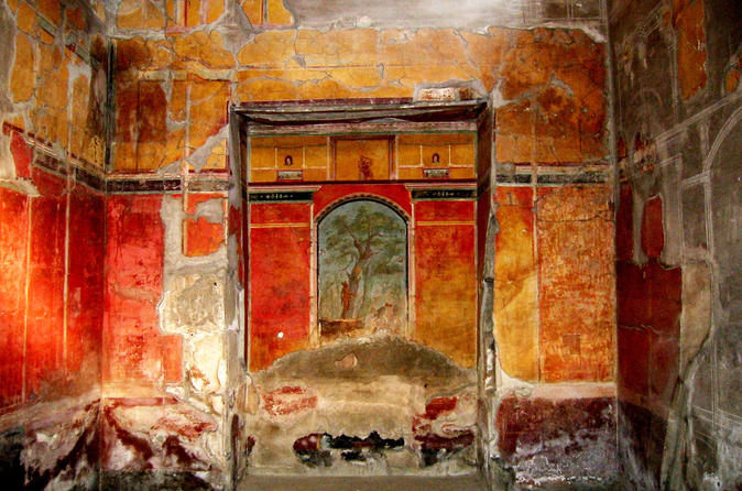 Skip-the-lines Herculaneum and Oplontis Private Guided Tour