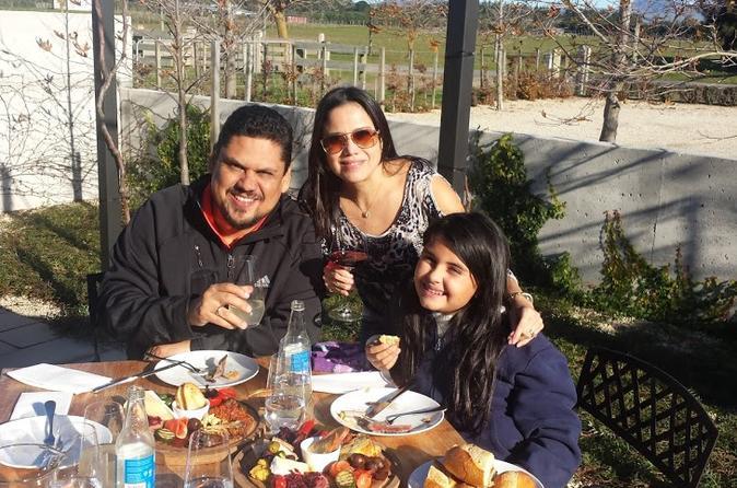 Private Full-Day Martinborough Wine Tour From Wellington