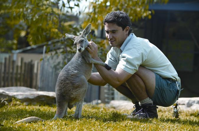 Australien Sydney Taronga Zoo