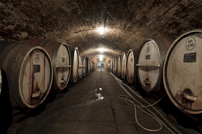 Wine-Making Experience with Wine Ambassador at Tahbilk Winery
