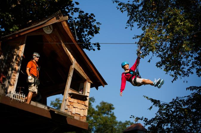 Waterfall canopy zip line tour plus park activity pass at foxfire in pigeon forge 257567