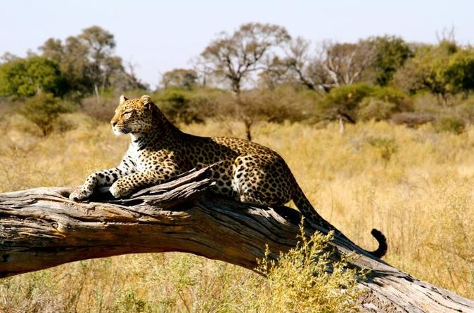 7days Magnificent Best of Kenya Wildlife Safari