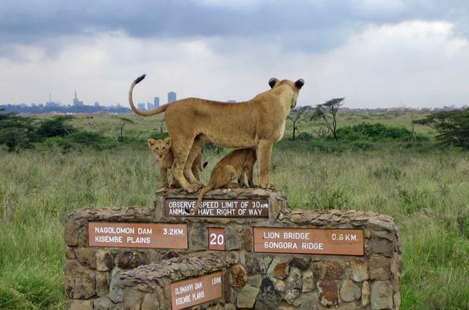 Nairobi National Park Day Excursion