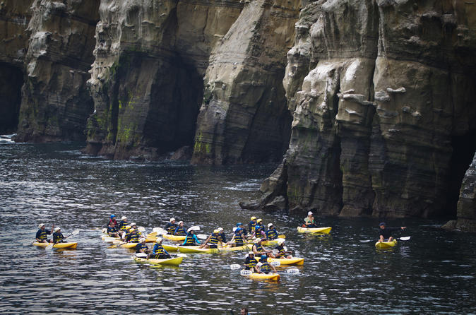 Original Sea Cave Kayak Tour