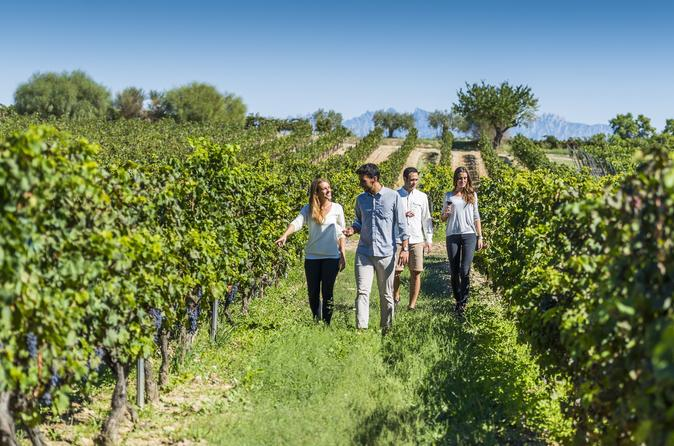 Torres Wine Cellars and Montserrat and Sitges Guided Day Tour from Barcelona with Optional Bacardi House