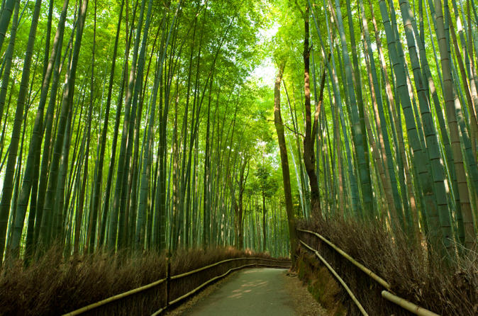 Arashiyama and Sagano Morning Walking Tour 2017 - Kyoto