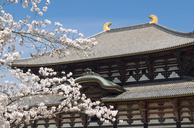 Kyoto and Nara Day Tour Including Golden Pavilion and Todai-ji Temple from Osaka