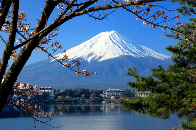 Mt Fuji Day Trip including Lake Ashi Sightseeing Cruise from Tokyo