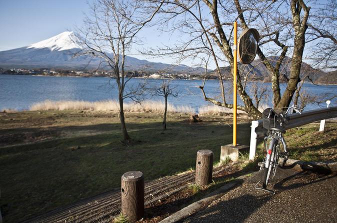 Mt Fuji Tour with Lake Kawaguchi Bike Tour from Tokyo