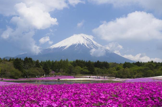 Viagem de um dia ao Monte Fuji com caminhada pela herança cultural, saindo de Tóquio