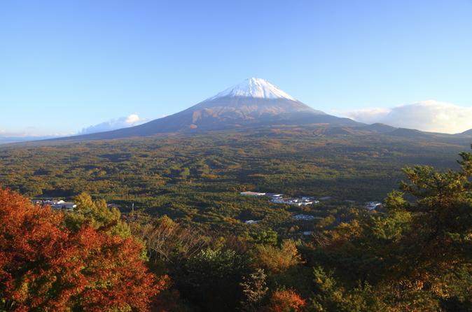 Viagem de um dia ao Monte Fuji e à floresta de Aokigahara saindo de Tóquio