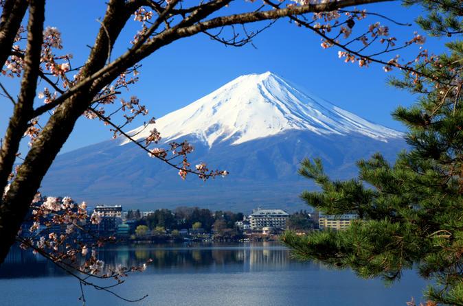 Viagem diurna ao Monte Fuji incluindo um cruzeiro turístico pelo lago Ashi, saindo de Tóquio