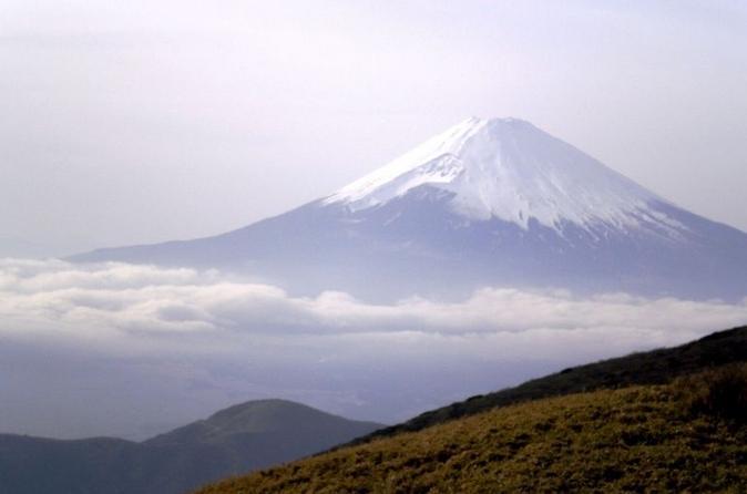 Tours From Yokohama To Mt Fuji