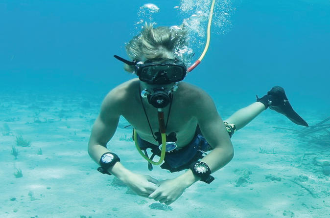 Punta cana party cruise with snorkeling hooka diving and parasailing in punta cana 250297