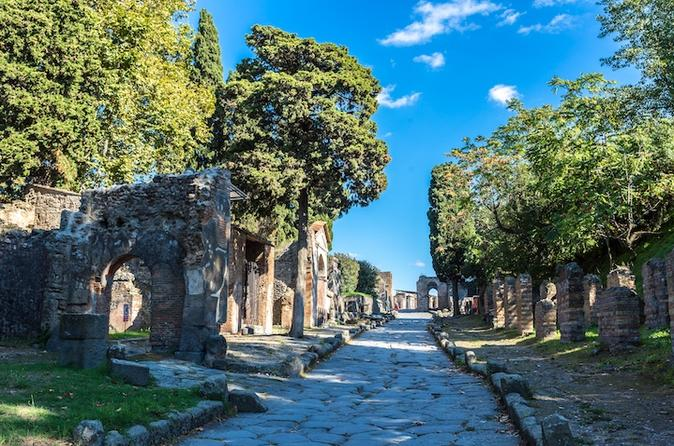 POMPEII EXCURSION FROM NAPLES