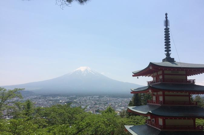 Mt Fuji full day private minivan tour from Tokyo