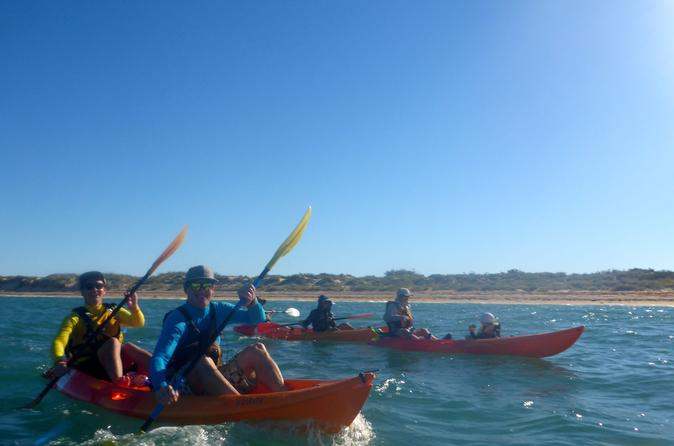 Afternoon ningaloo reef kayaking and snorkeling tour in exmouth 249650