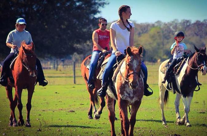 1 hour casual trail ride in sarasota 246986