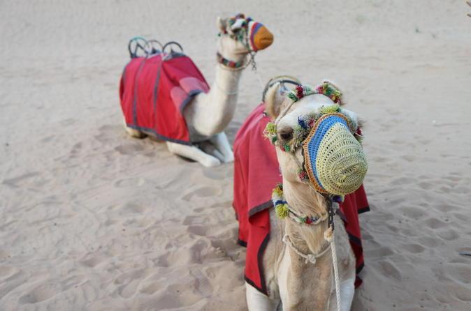 4x4-woestijnsafari in Dubai door de duinen, zandsurfen, kameelrit en BBQ