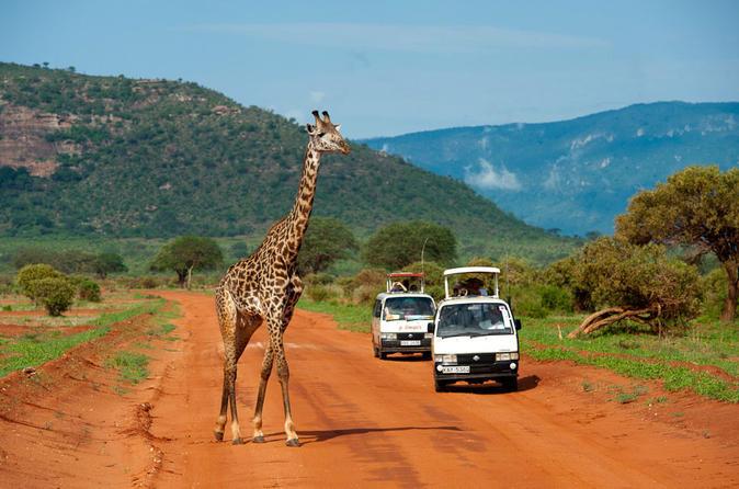 Full-Day Nairobi National Park, Elephant Orphange, Giraffe Centre and Karen Blixen Museum Tour from Nairobi