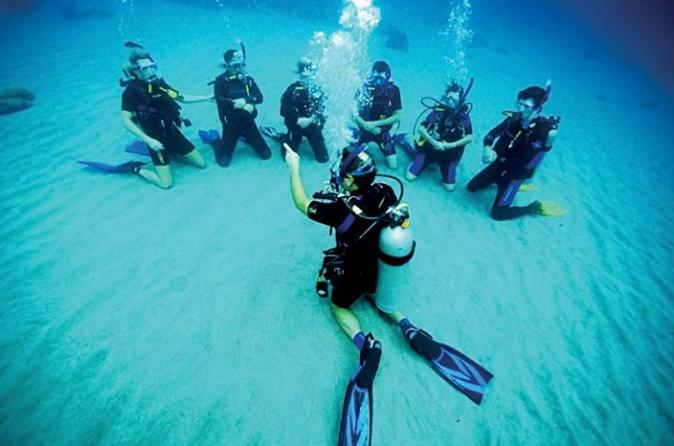 Introduction Dive No Experience or Certification Needed
