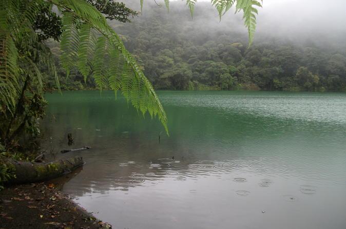 Hiking Tour at Cerro Chato Hill