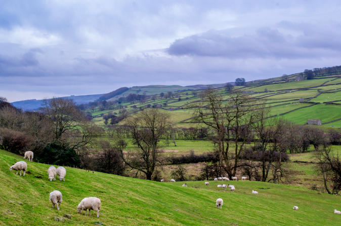 Full day yorkshire dales tour from york in york 249738