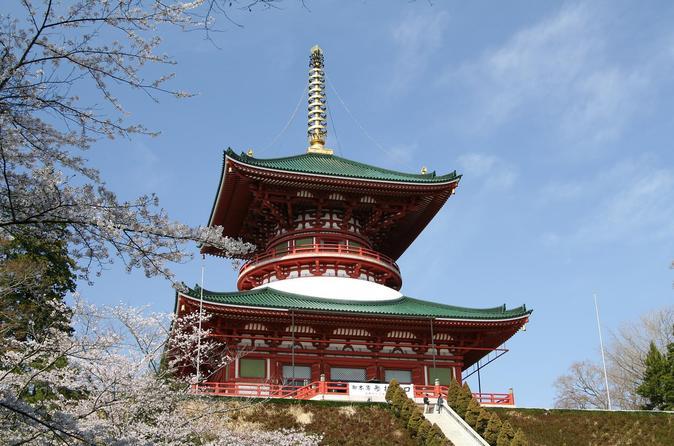 Narita layover tour in narita 269780
