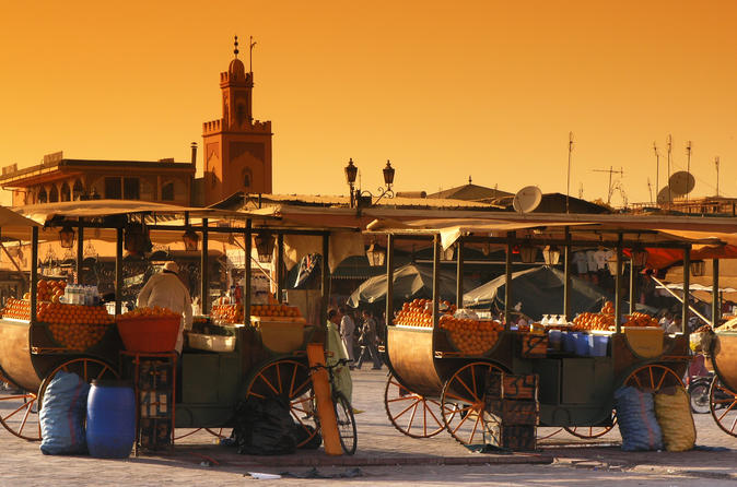 Private Tour: Half-Day Sightseeing Tour of Marrakech
