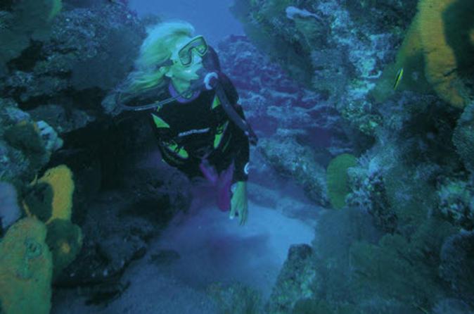 Los Cabos Shore Excursion: Customized 2-Tank Dive