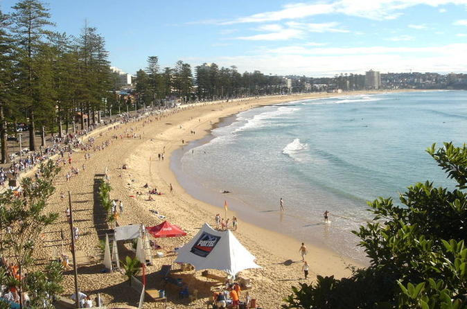 Sydney, Manly and Northern Beaches Morning Tour with Optional Harbour Lunch Cruise