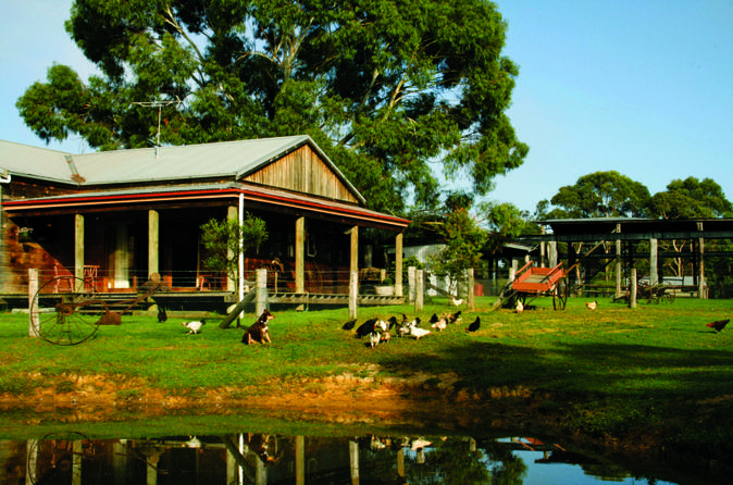 Tobruk Australian Outback Experience including Aussie BBQ Lunch