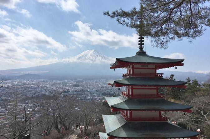 Private Full Day Mount Fuji Tour from Tokyo Including 3 View Spots
