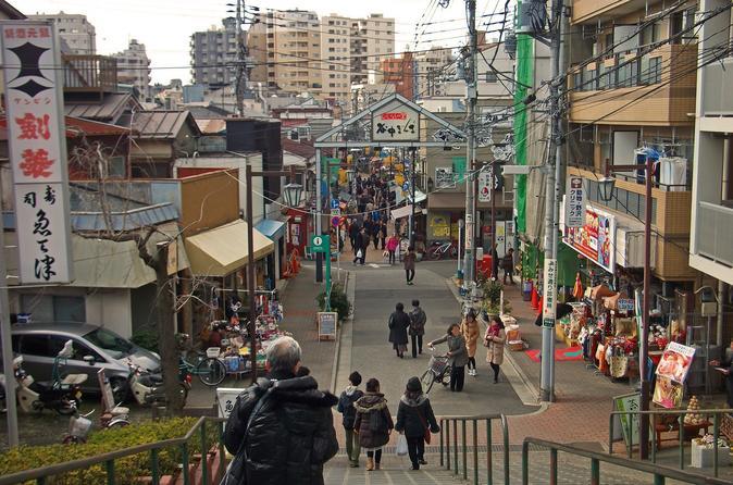 Private Half-Day Tokyo with Meiji Shrine and Yanaka
