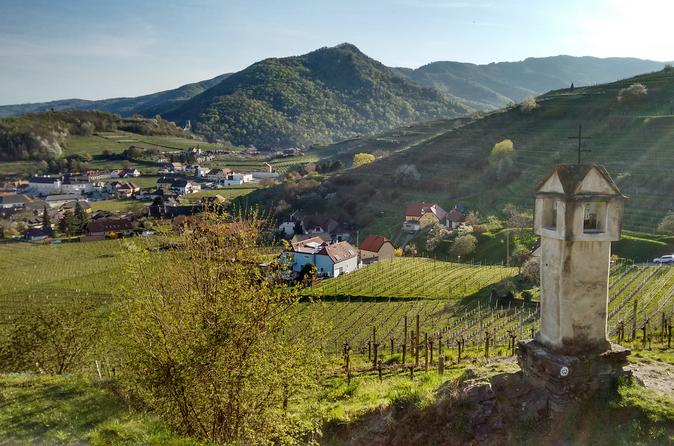 2-Hour Easy Small-Group Hiking Tour on Buchberg Mountain in Beautyfull Wachau Valley from Vienna
