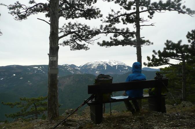 2 Hour Small Group Alpine Hiking, Gosing Mountain Vienna Tour