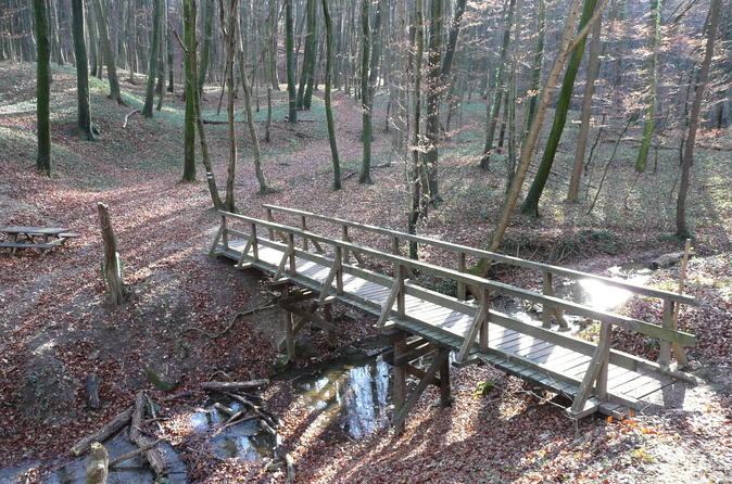 2-Hour Small-Group Hiking Tour through the Hagenbach Gorge in Vienna Woods from Vienna