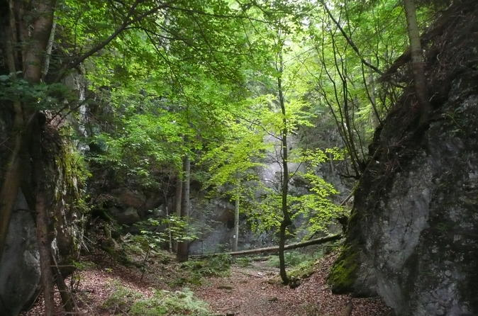 3-Hour Alpine Small-Group Hiking Tour from Vienna