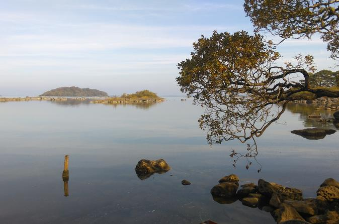 Half-Day Guided Cycle Tour in Connemara from Cong