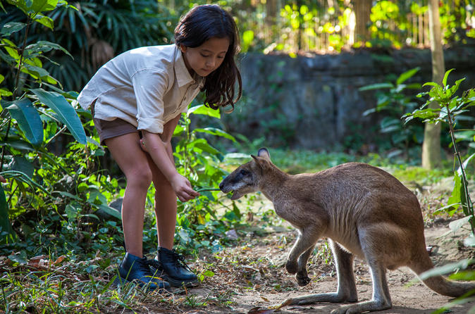 Zookeeper for a Day at the Bali Zoo